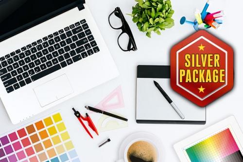 Silver Logo Design Package
